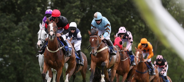 Stratford horse racing betting odds alexbetting live tv