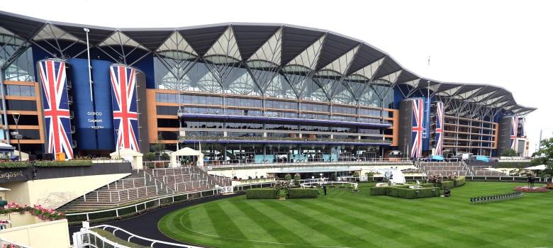 Royal sports betting kampala masterchef uk betting odds