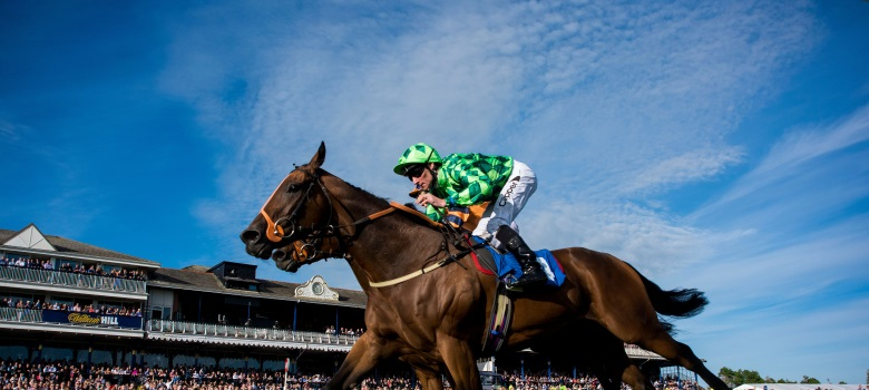 Betting tips for st leger sur trade crypto currency exchange